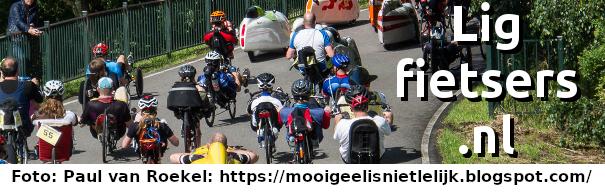 ligfietsers.nl